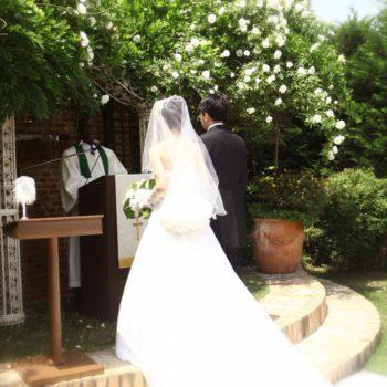 純白のドレスと緑のコントラスト