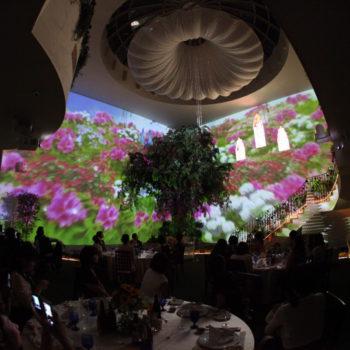 様々な景色を変える3Dマッピング