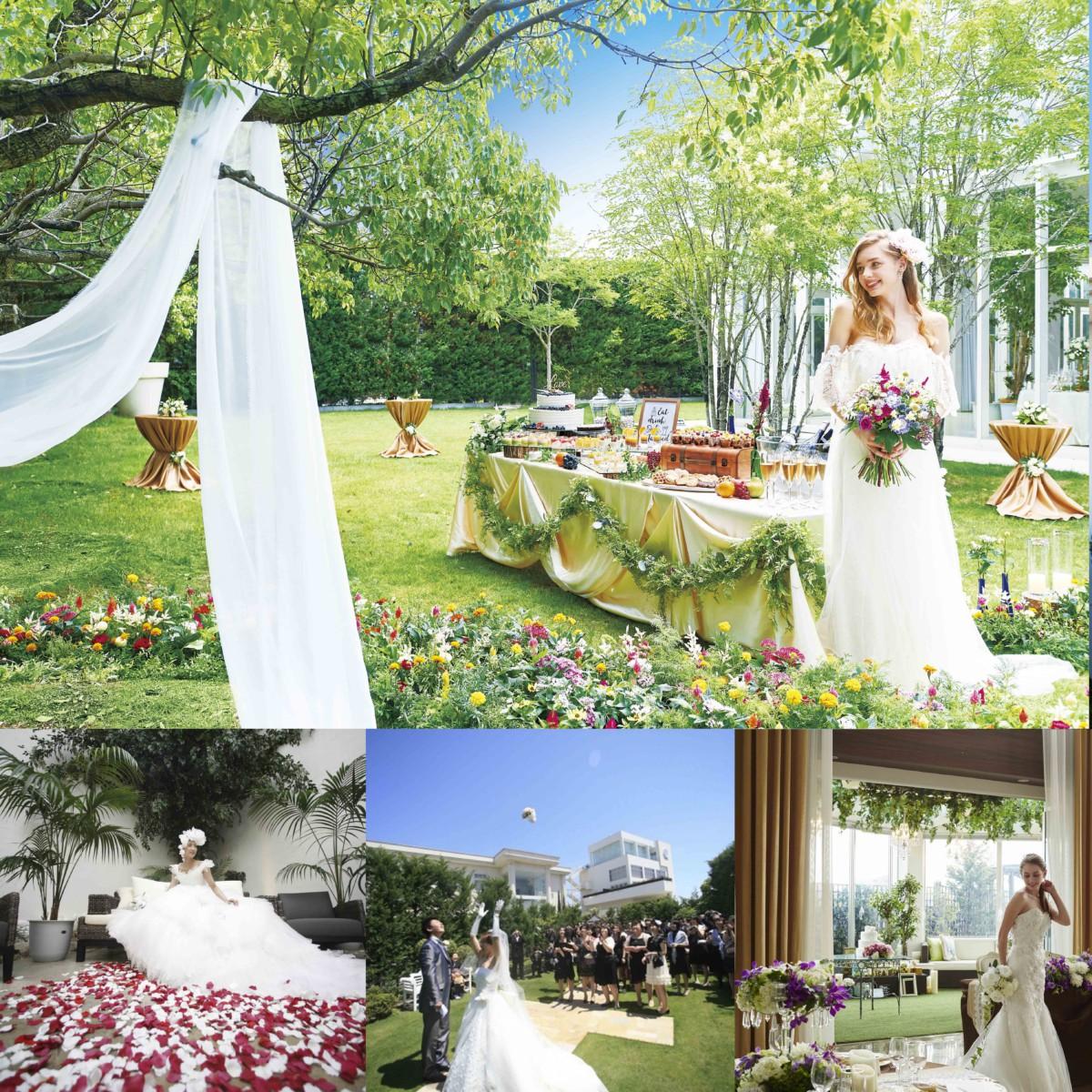 【1日1組限定】セフィロト・テラ・ナチュレ3つの結婚式場合同ツアー