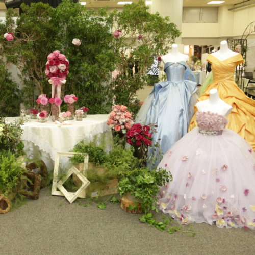 最新ディズニープリンセスドレス ブランドウェディングドレスカラードレス無料試着フェア